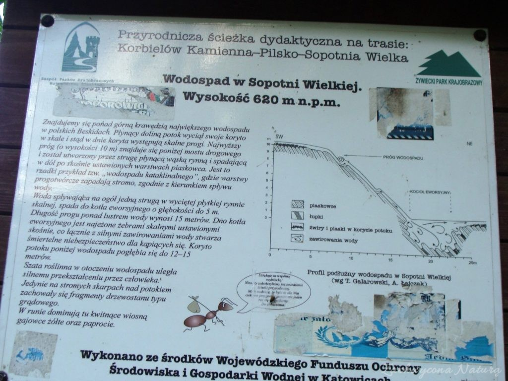 Wodospad w Sopotni Wielkiej w Beskidzie Żywieckim (2) (Custom)