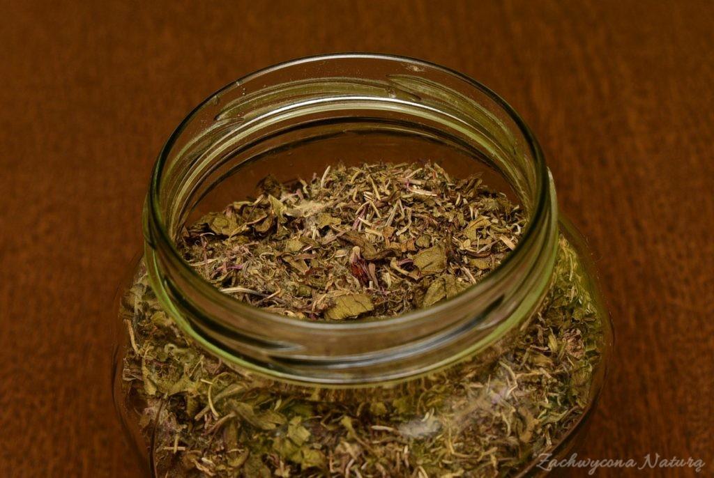 Koporskij czaj z wierzbówki kiprzycy z kwiatami wierzbówki