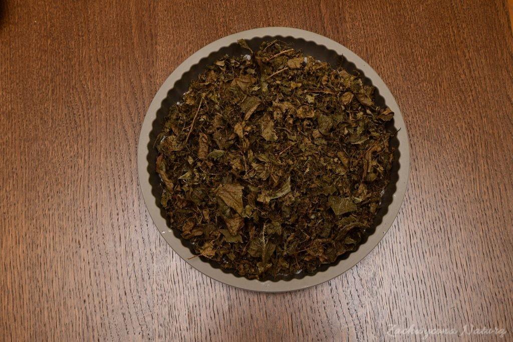 Fermentowane liście orzecha włoskiego