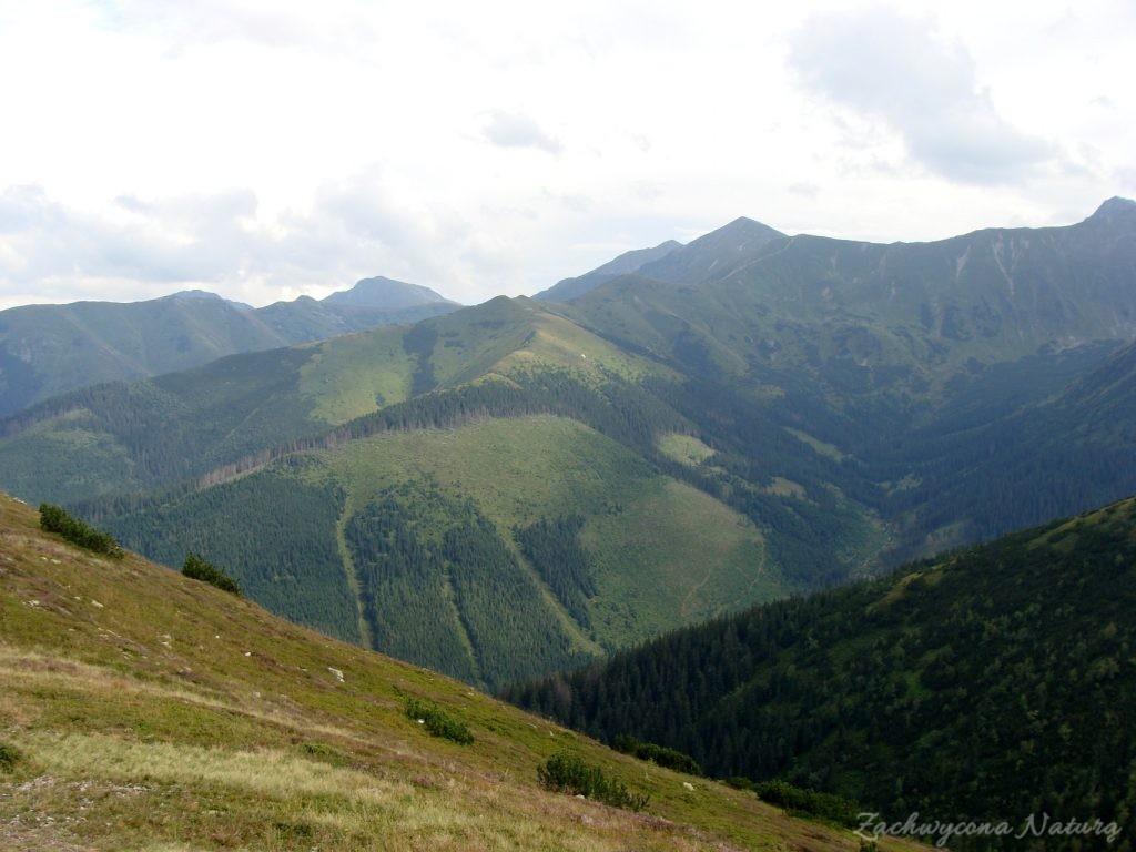 Idąc na Grzesia przez Dolinę Chochołowską (58)