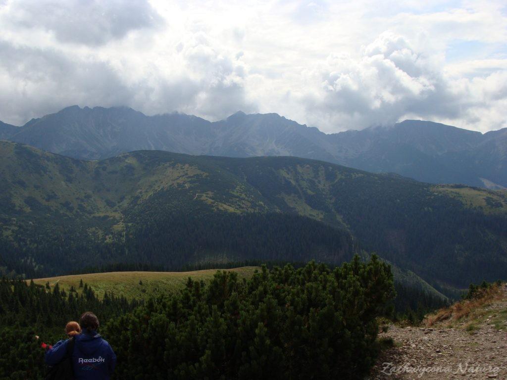 Idąc na Grzesia przez Dolinę Chochołowską (63)