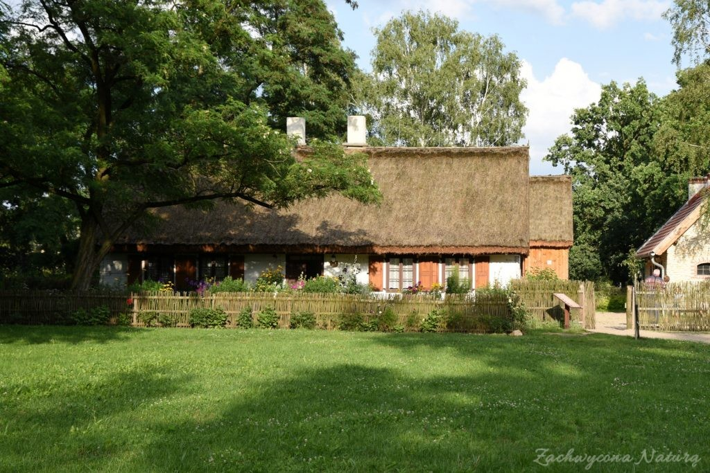 Ogródek przydomowy w skansenie w Łódzkim Ogrodzie Botanicznym (1)