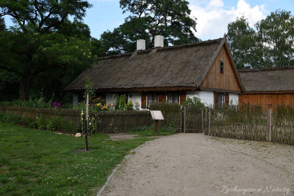 Ogródek przydomowy w skansenie w Łódzkim Ogrodzie Botanicznym (2)