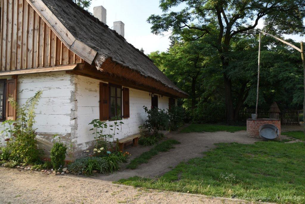 Ogródek przydomowy w skansenie w Łódzkim Ogrodzie Botanicznym (24)