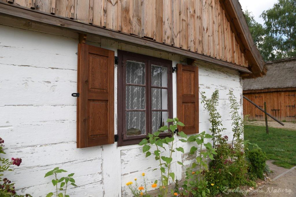 Ogródek przydomowy w skansenie w Łódzkim Ogrodzie Botanicznym (3)
