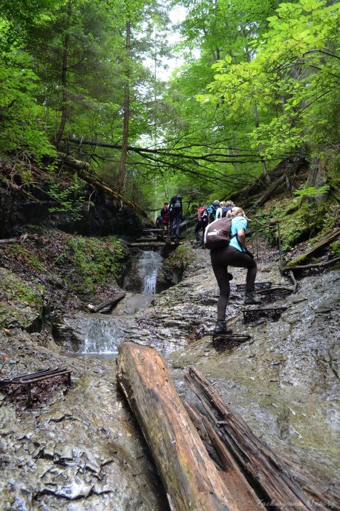 Wąwóz Sucha Bela w Słowackim Raju (22)