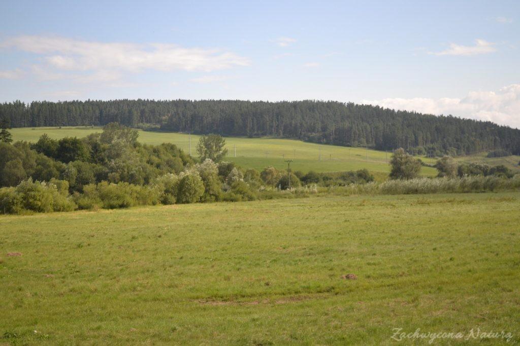Wąwóz Sucha Bela w Słowackim Raju (31)