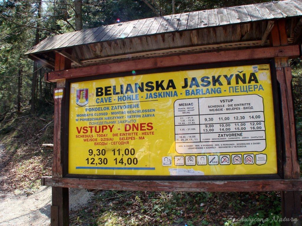 W drodze do Jaskini Bielińskiej w Tatrach Bielskich (5)