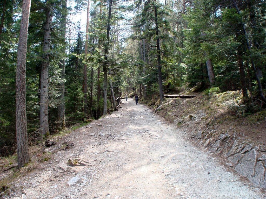 W drodze do Jaskini Bielińskiej w Tatrach Bielskich (7)