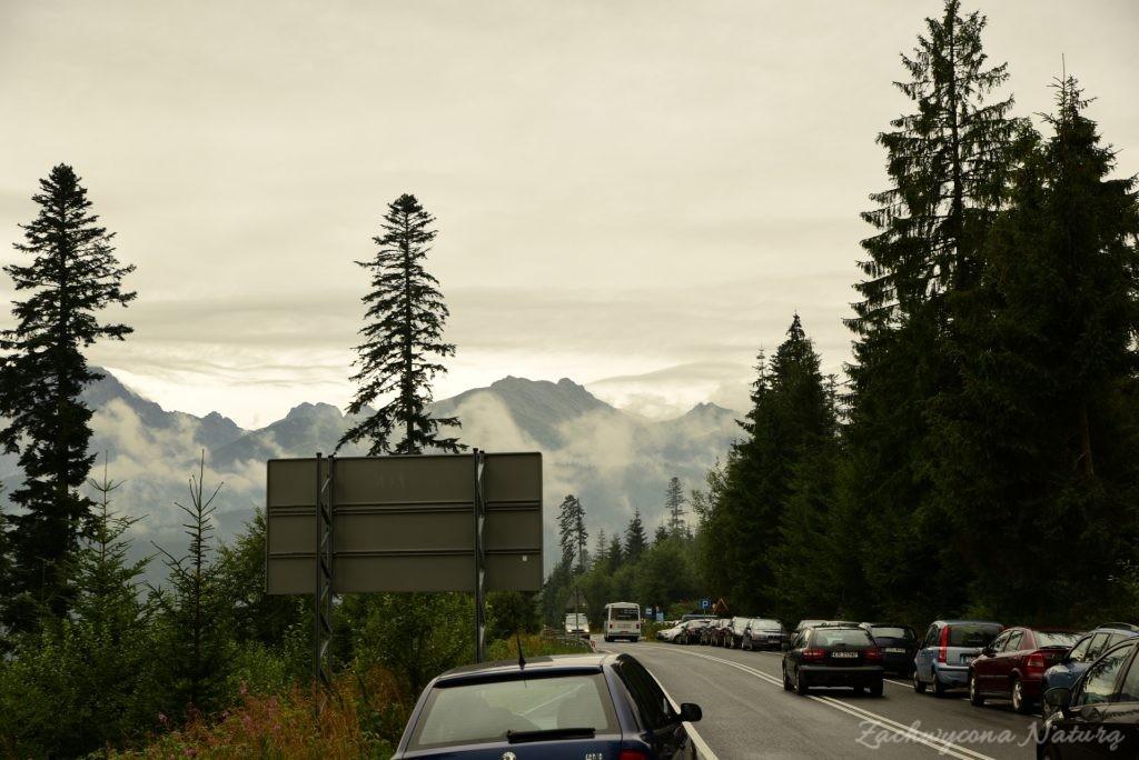 Widok z drogi na Palenicę Białczańską (6)