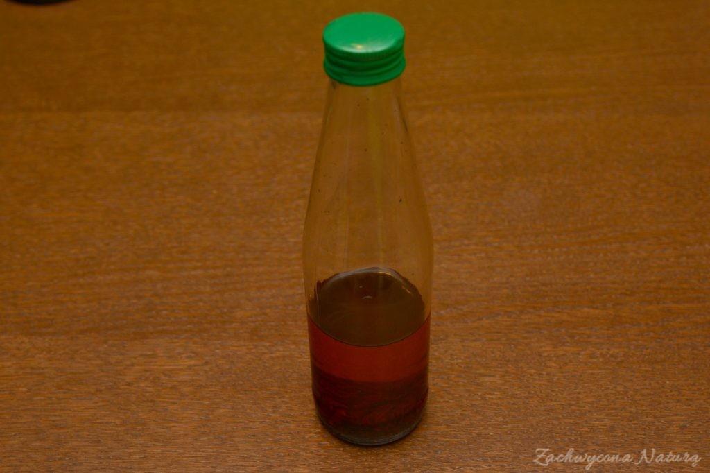 Jak zrobić naturalną esencję waniliową (2)