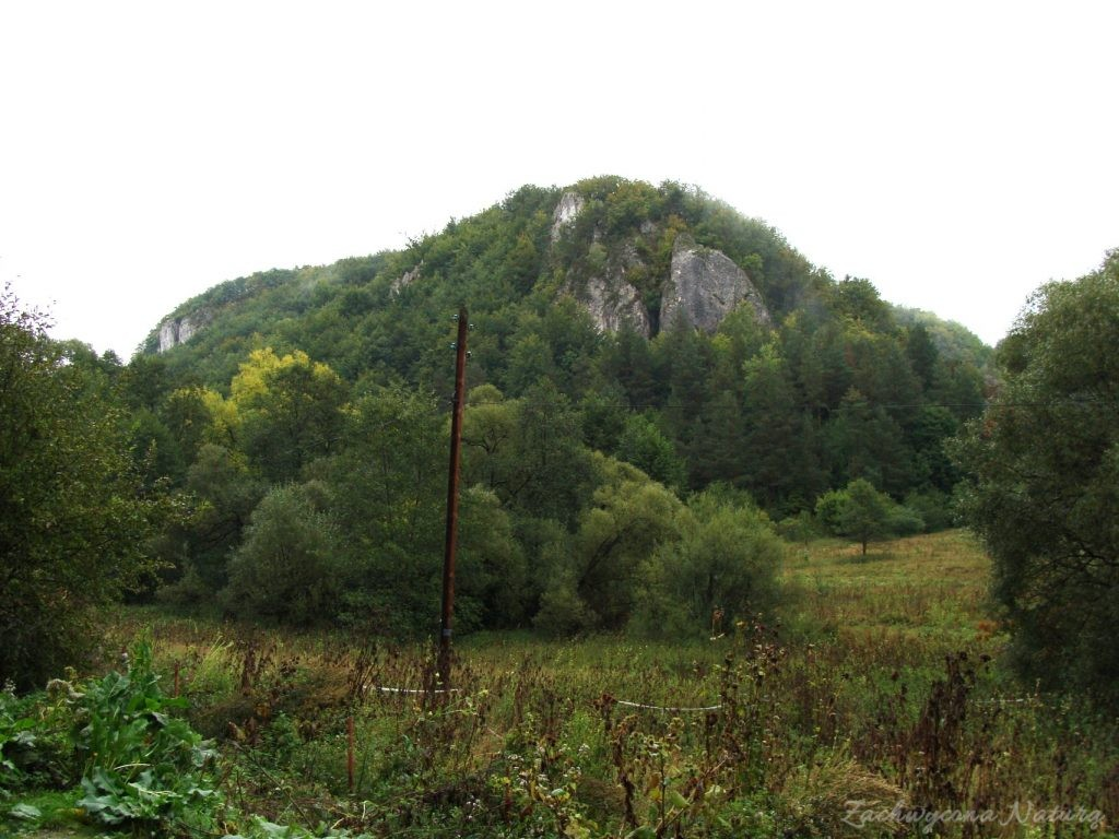 Jurajska Dolina Będkowska (1)