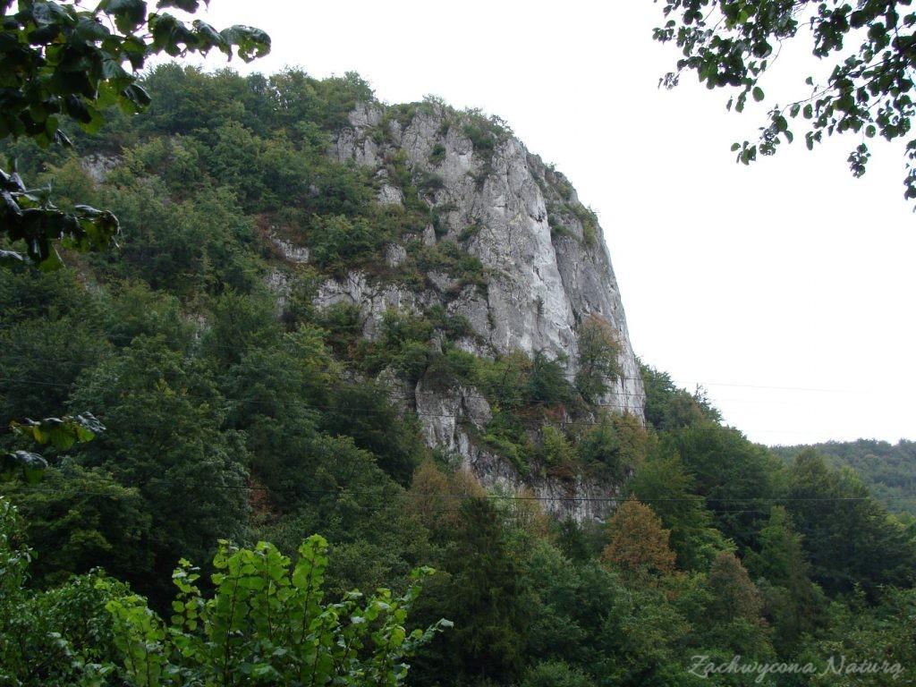 Jurajska Dolina Będkowska (10)