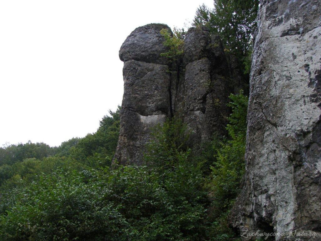 Jurajska Dolina Będkowska (19)