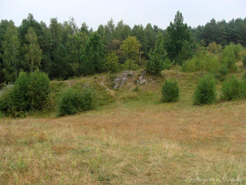 Późnosierpniowy Załęczański Park Krajobrazowy (14)