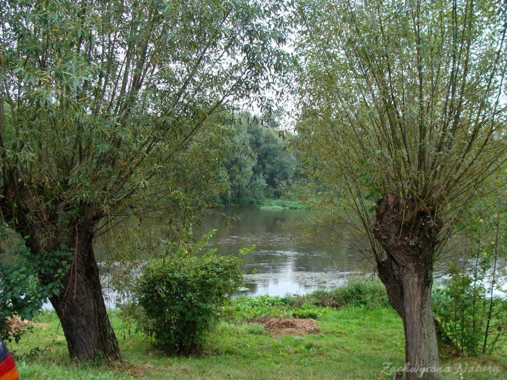 Późnosierpniowy Załęczański Park Krajobrazowy (28)