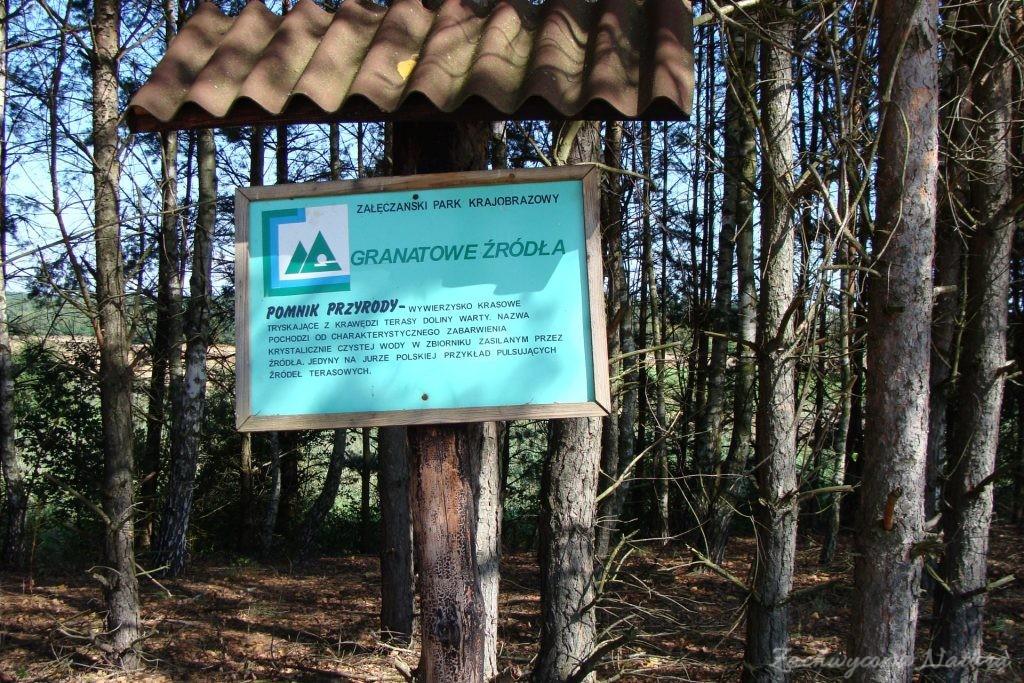 Późnosierpniowy Załęczański Park Krajobrazowy (44)