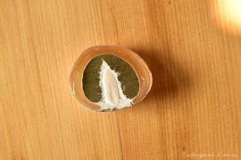 Sromotnik bezwstydny - smaczny grzyb jadalny (2)