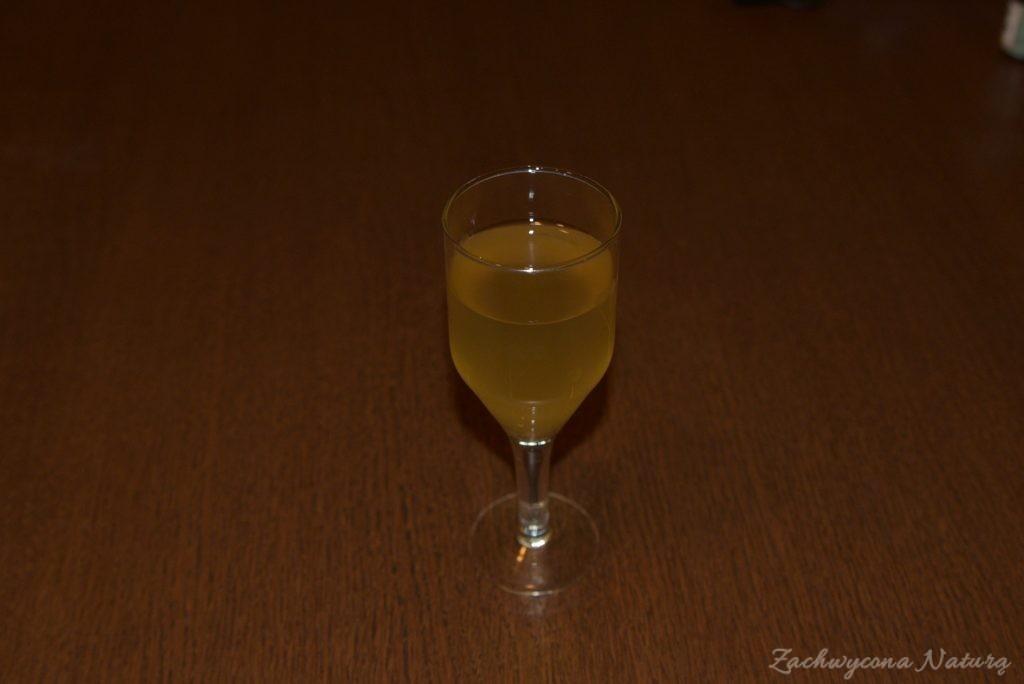 Wino z kwiatów czarnego bzu
