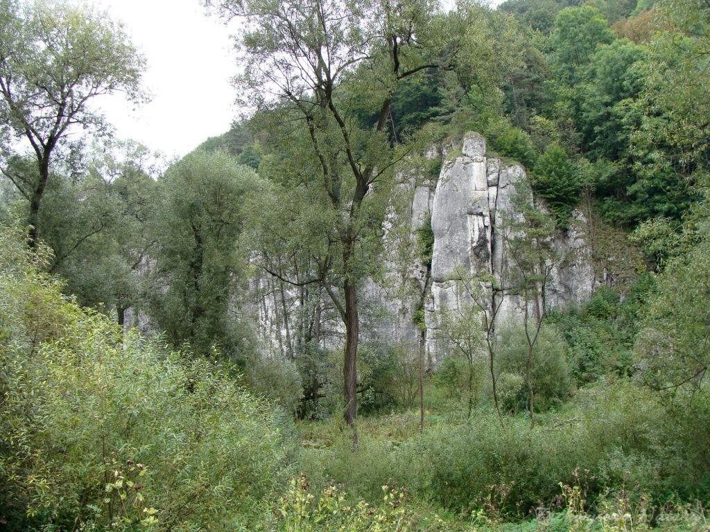 Wrześniowy Ojcowski Park Narodowy (15)