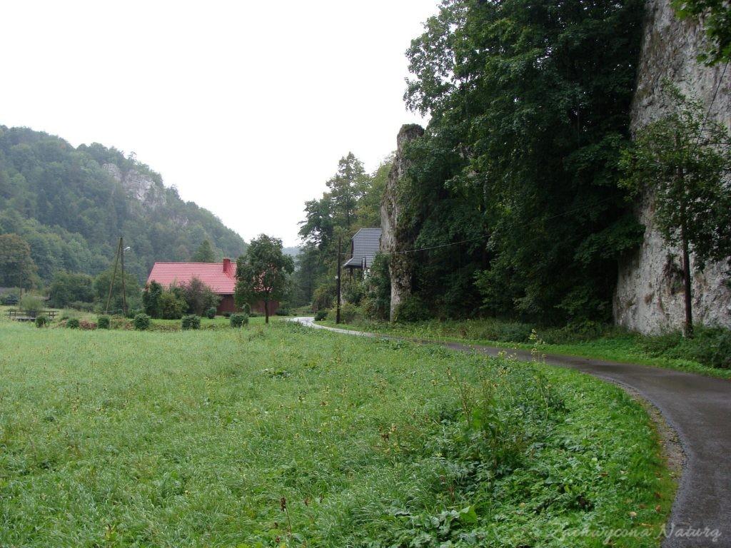Wrześniowy Ojcowski Park Narodowy (21)
