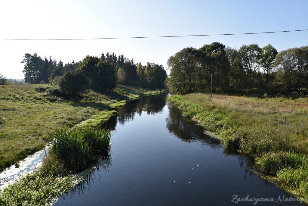 Rzeka Wel w Welskim Parku Krajobrazowym