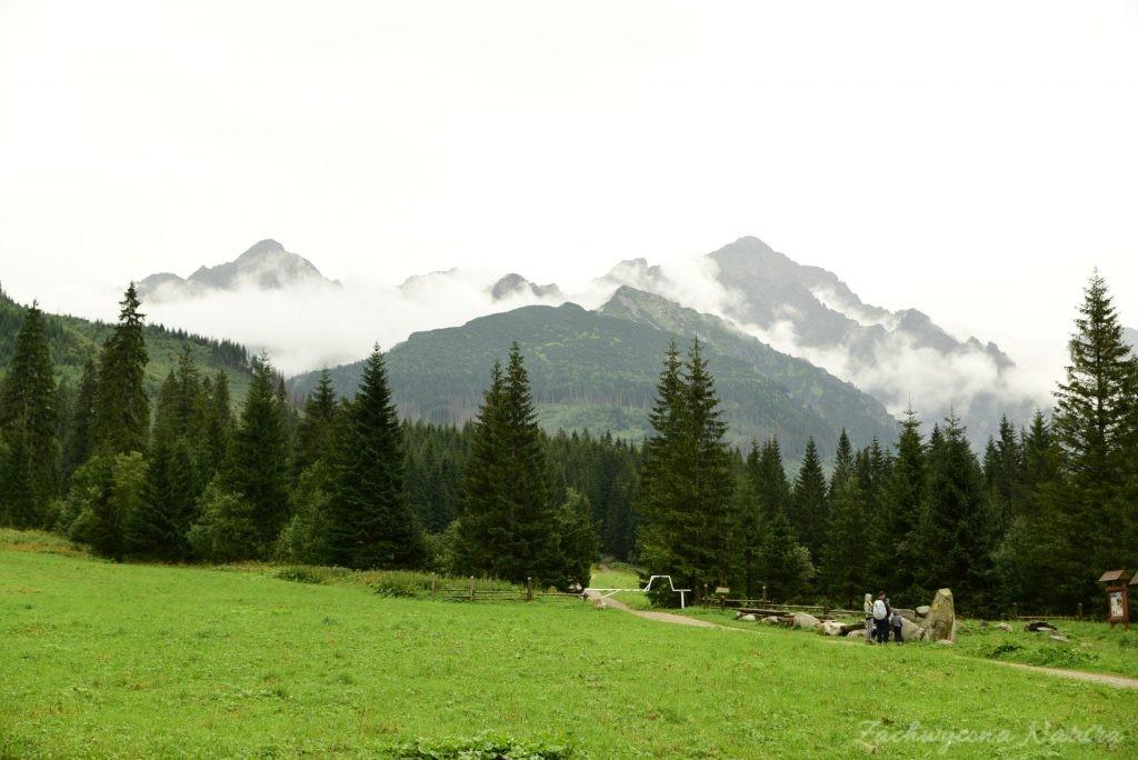 Sierpniowa Polana pod Muraniem w Tatrach Bielskich (13)