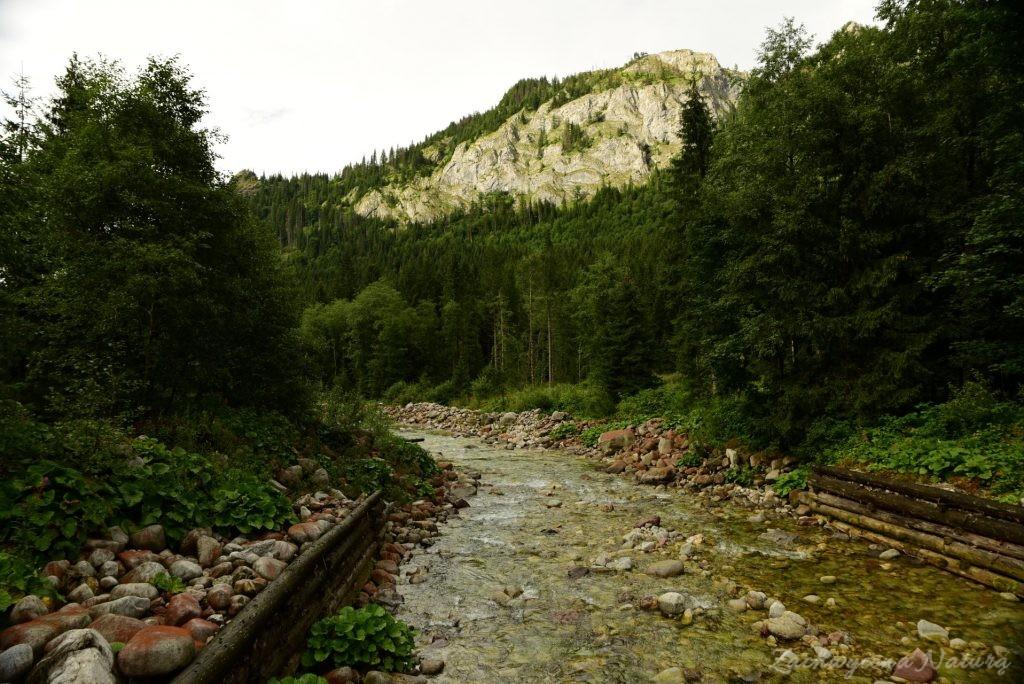Sierpniowa Polana pod Muraniem w Tatrach Bielskich (24)