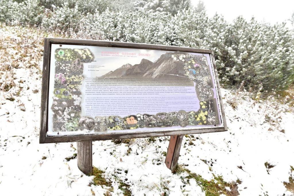 W poszukiwaniu jesieni, (a może zimy) w Tatrach Bielskich - tym razem dotarliśmy do Szerokiej Przełęczy (16)