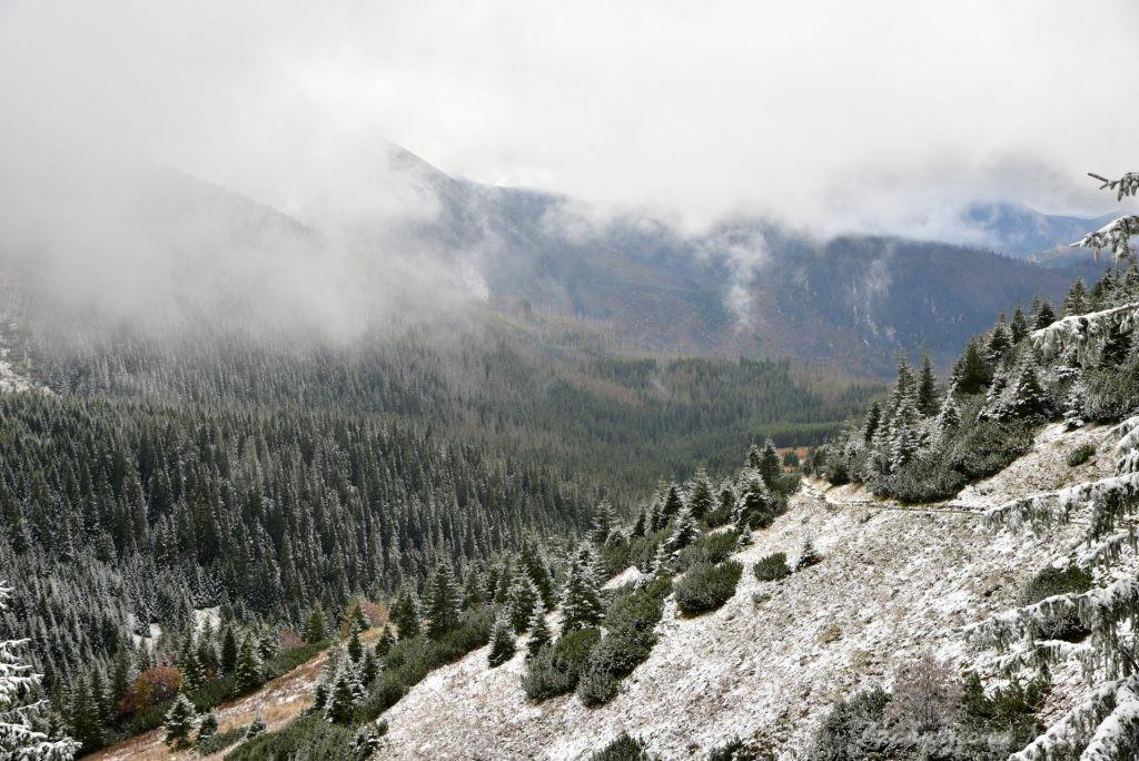 W poszukiwaniu jesieni, (a może zimy) w Tatrach Bielskich - tym razem dotarliśmy do Szerokiej Przełęczy (18)