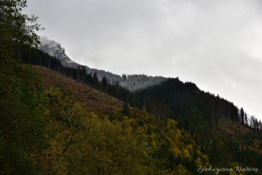 W poszukiwaniu jesieni, (a może zimy) w Tatrach Bielskich - tym razem dotarliśmy do Szerokiej Przełęczy (2)