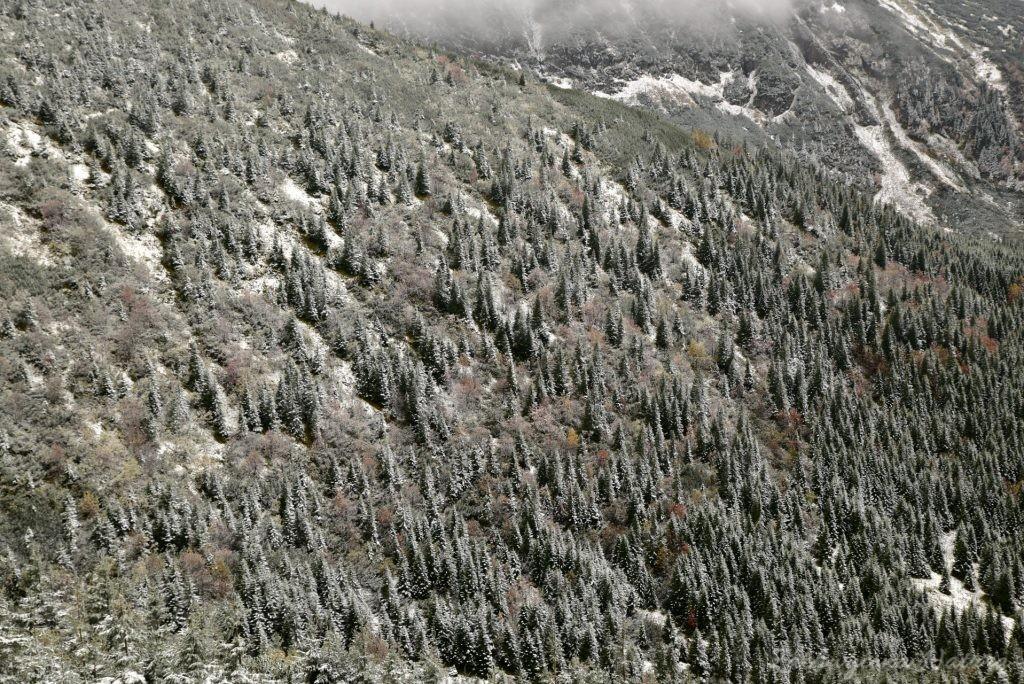 W poszukiwaniu jesieni, (a może zimy) w Tatrach Bielskich - tym razem dotarliśmy do Szerokiej Przełęczy (20)