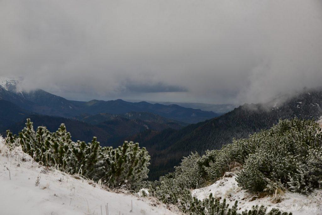 W poszukiwaniu jesieni, (a może zimy) w Tatrach Bielskich - tym razem dotarliśmy do Szerokiej Przełęczy (31)