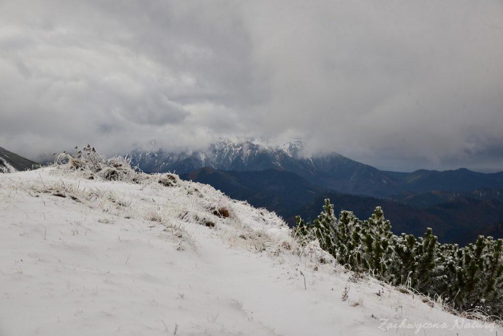 W poszukiwaniu jesieni, (a może zimy) w Tatrach Bielskich - tym razem dotarliśmy do Szerokiej Przełęczy (32)