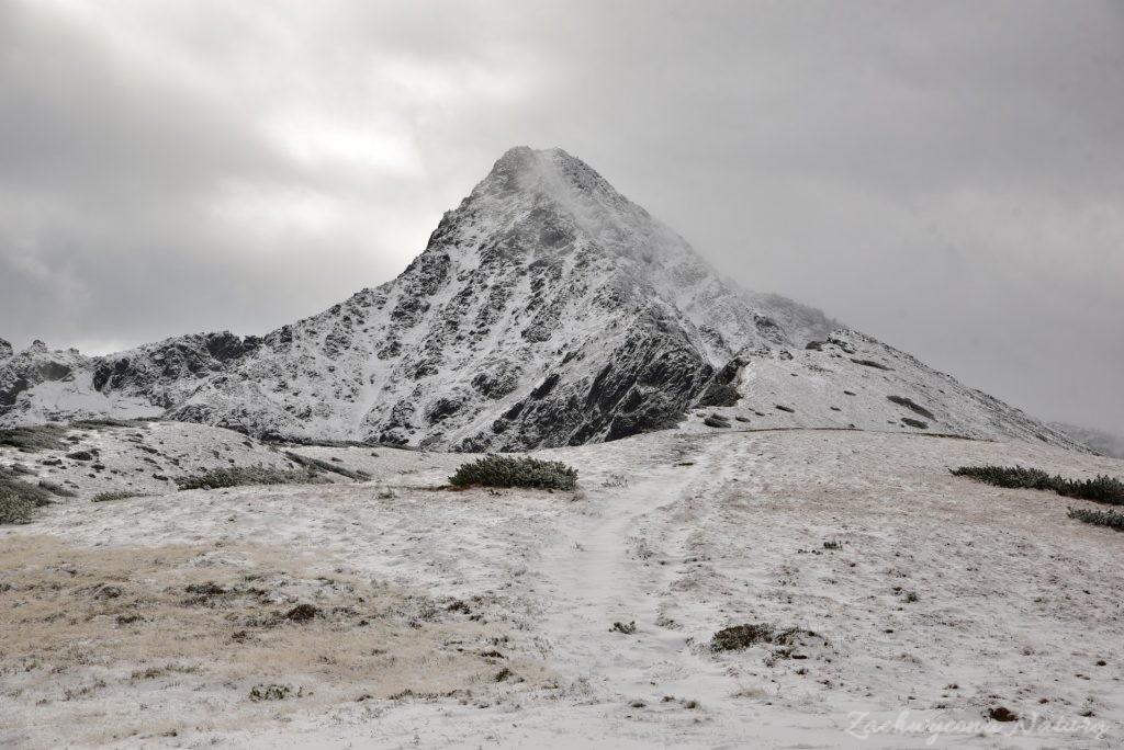 W poszukiwaniu jesieni, (a może zimy) w Tatrach Bielskich - tym razem dotarliśmy do Szerokiej Przełęczy (35)