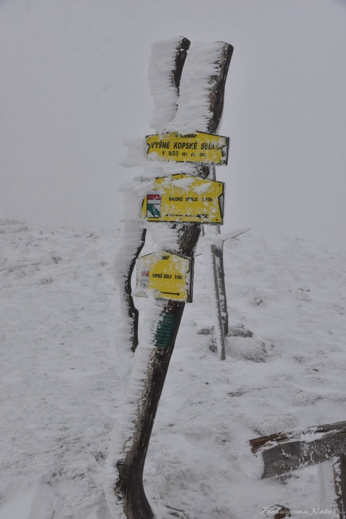 Szalony Przechód (Vyšné Kopské sedlo) przełęcz w południowej grani Szalonego Wierchu, która łączy Tatry Bielskie z Jagnięcym Szczytem w Tatrach Wysokich.