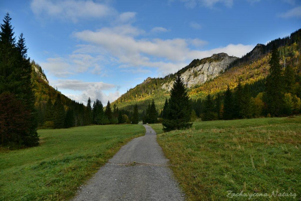 W poszukiwaniu jesieni, (a może zimy) w Tatrach Bielskich - tym razem dotarliśmy do Szerokiej Przełęczy (5)