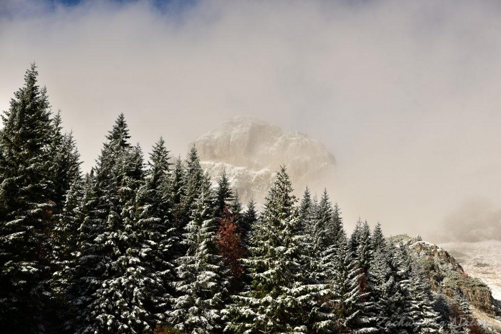 W poszukiwaniu jesieni, (a może zimy) w Tatrach Bielskich - tym razem dotarliśmy do Szerokiej Przełęczy (65)