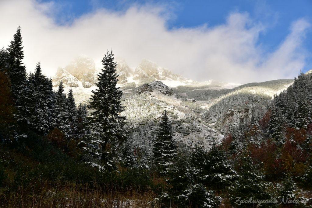 W poszukiwaniu jesieni, (a może zimy) w Tatrach Bielskich - tym razem dotarliśmy do Szerokiej Przełęczy (68)