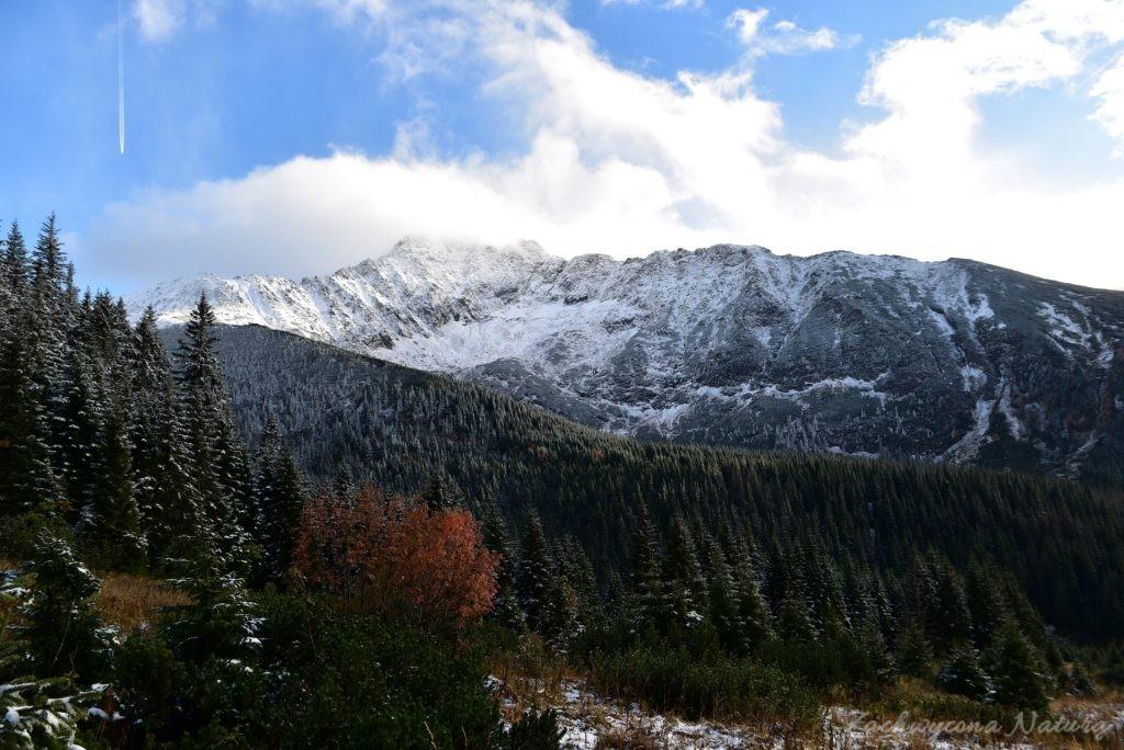 W poszukiwaniu jesieni, (a może zimy) w Tatrach Bielskich - tym razem dotarliśmy do Szerokiej Przełęczy (70)