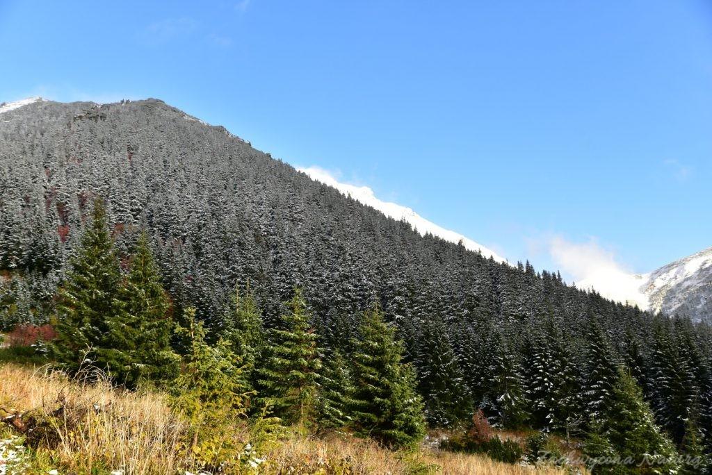 W poszukiwaniu jesieni, (a może zimy) w Tatrach Bielskich - tym razem dotarliśmy do Szerokiej Przełęczy (77)