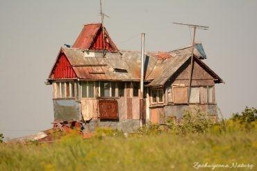 Obrazki z Rumunii - Delta Dunaju (4)